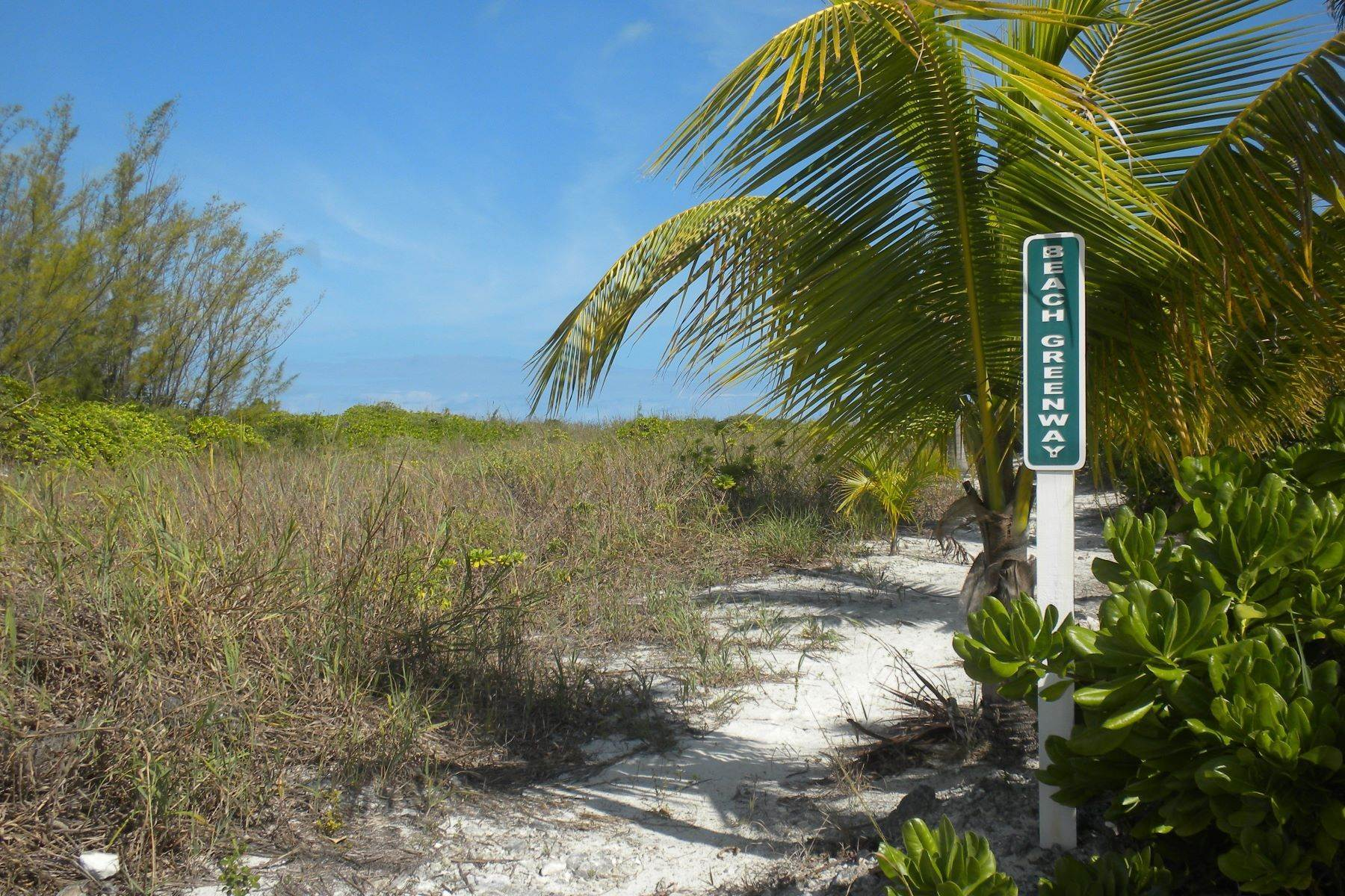 6. Land at Treasure Cay, Abaco, Bahamas
