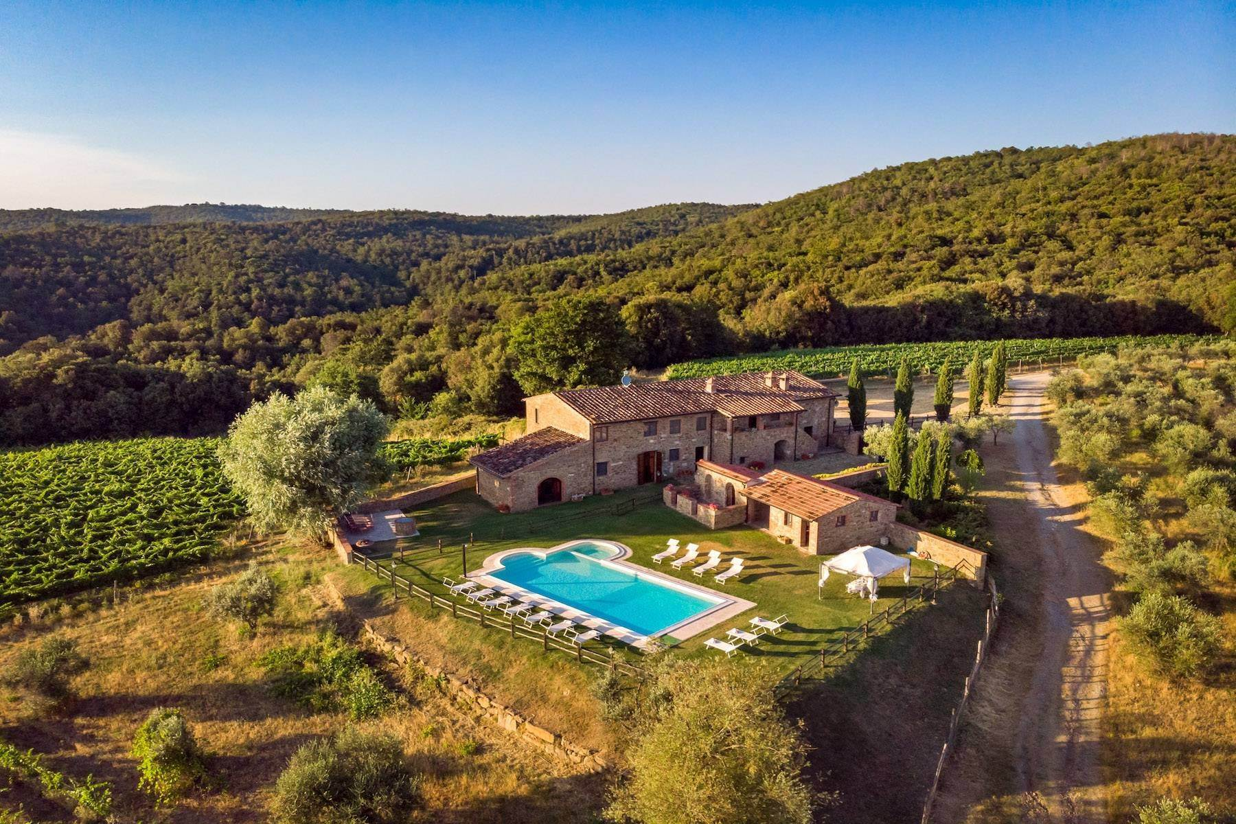 Other Residential Homes for Sale at Vast vineyard, olive grove and woodland estate Rapolano Terme, Siena, Italy