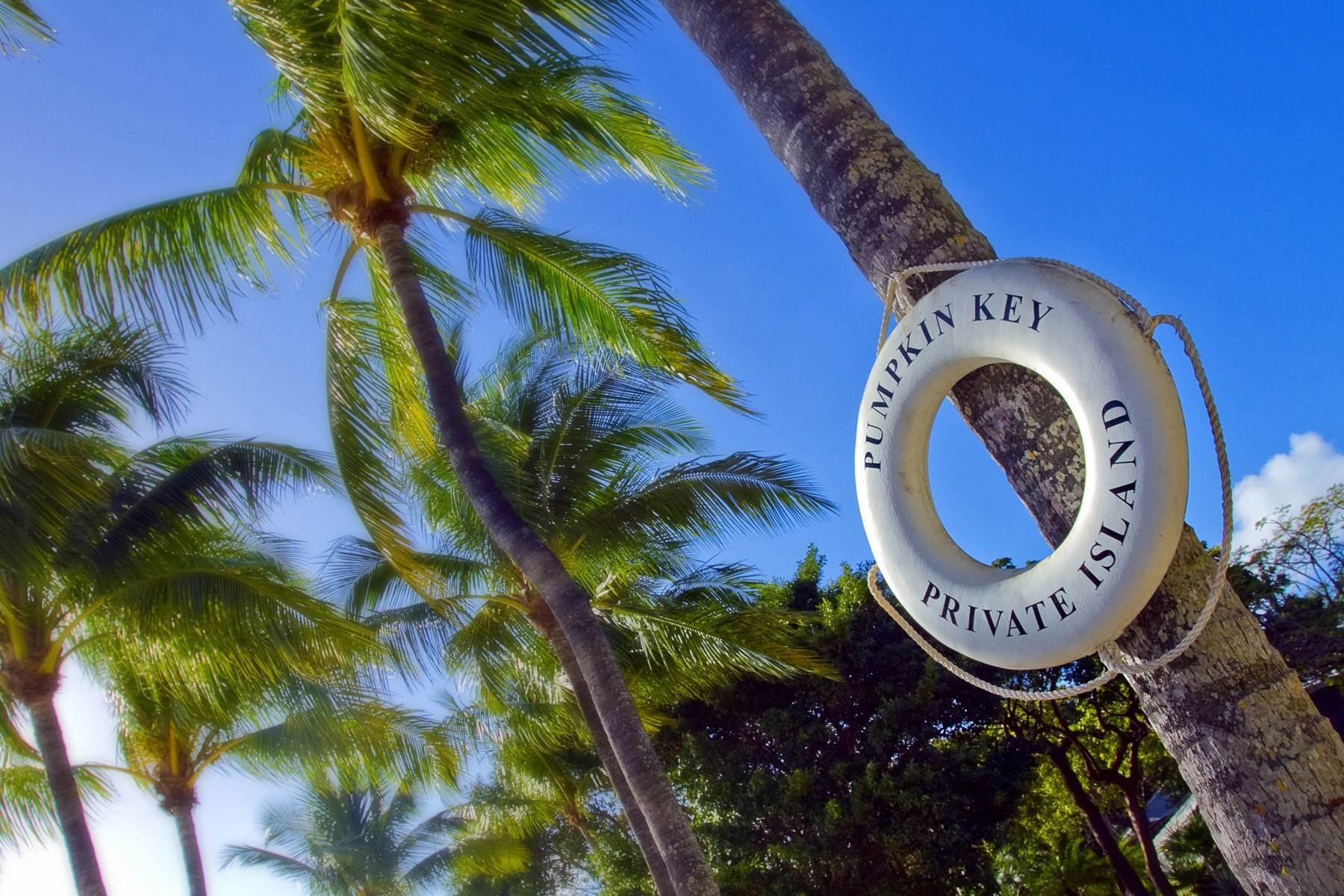 13. à Ocean Reef Club, Key Largo, Floride, 33037 États-Unis